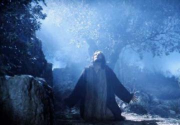 Holy Week – The Garden of Gethsemane