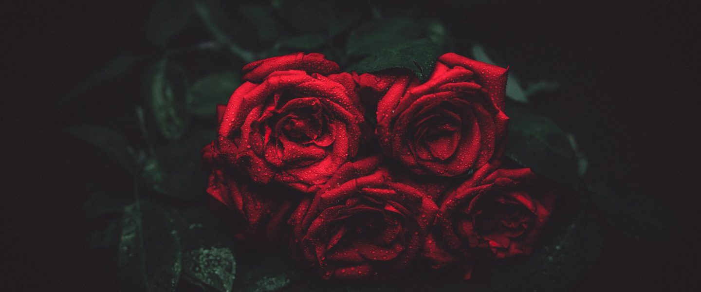 Remembrance – love and loss